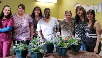 Beautiful potted plants by the women of Ladies Night Out